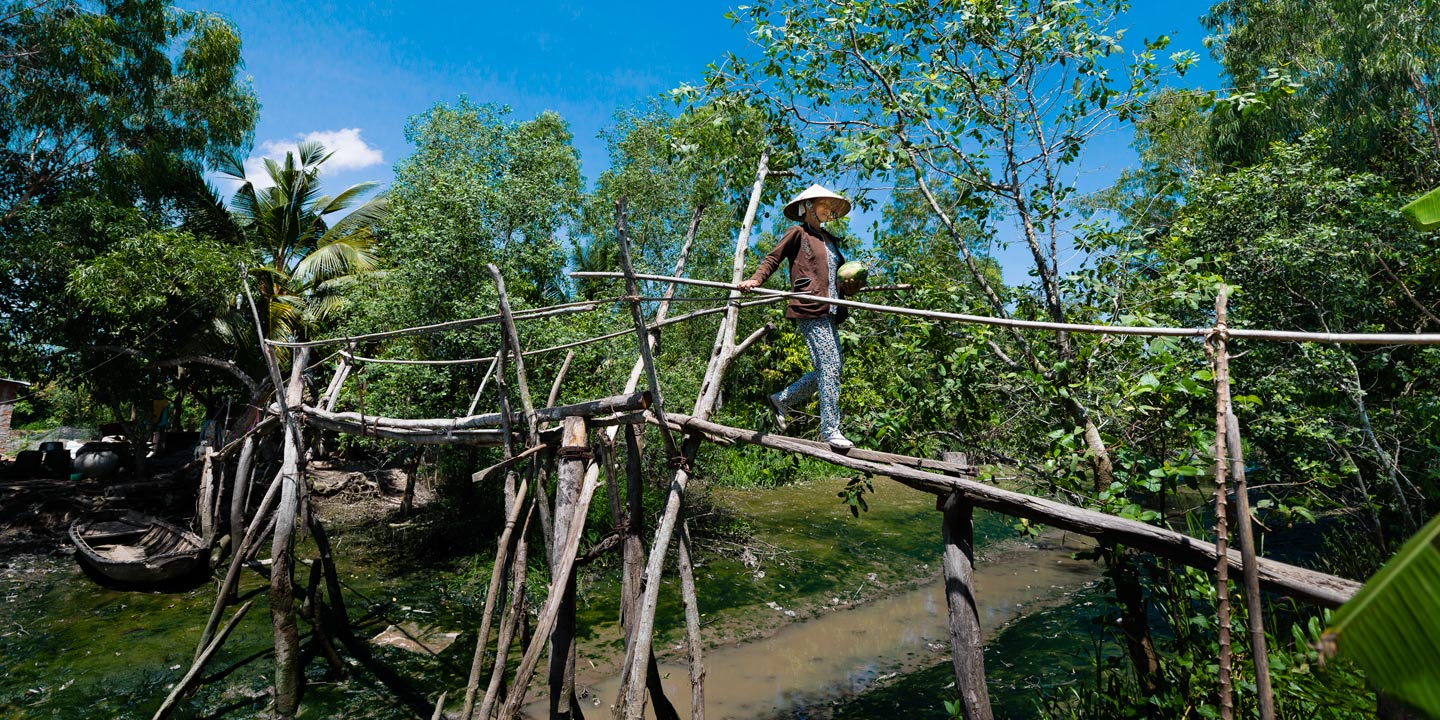 Monkey-Bridge-Mekong-Delta